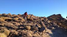 Roque trail